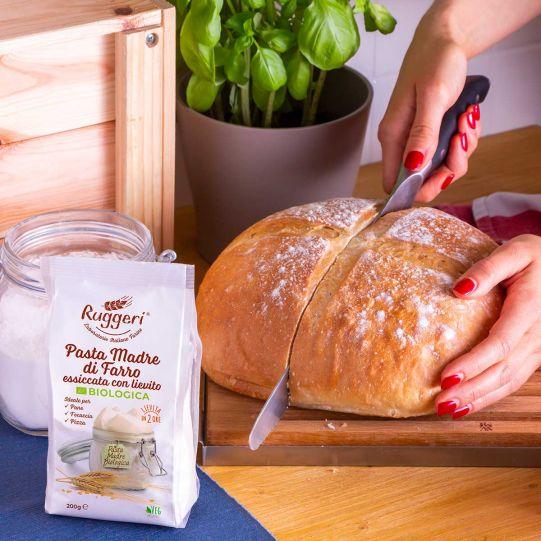 Pasta Madre di Farro essiccata con Lievito Biologica