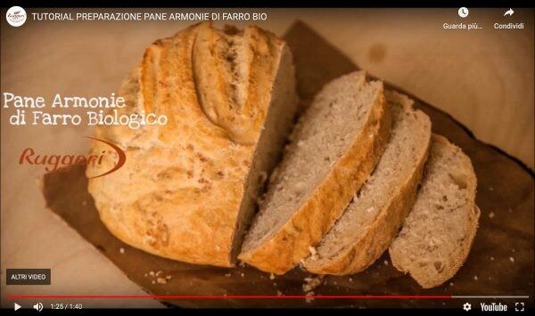 Video ricetta, Preparato per Pane Armonie di Farro BIO Ruggeri